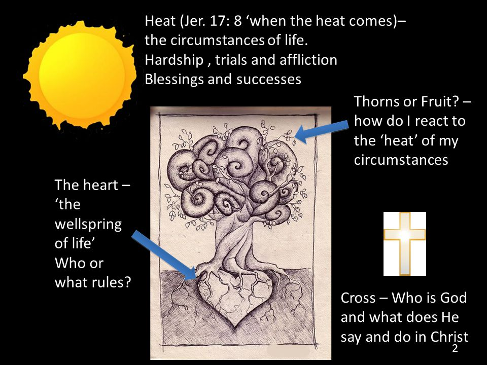 Heat (Jer. 17: 8 'when the heat comes)– the circumstances of life.