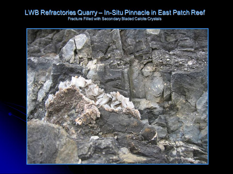 LWB Refractories Quarry – In-Situ Pinnacle in East Patch Reef Fracture Filled with Secondary Bladed Calcite Crystals