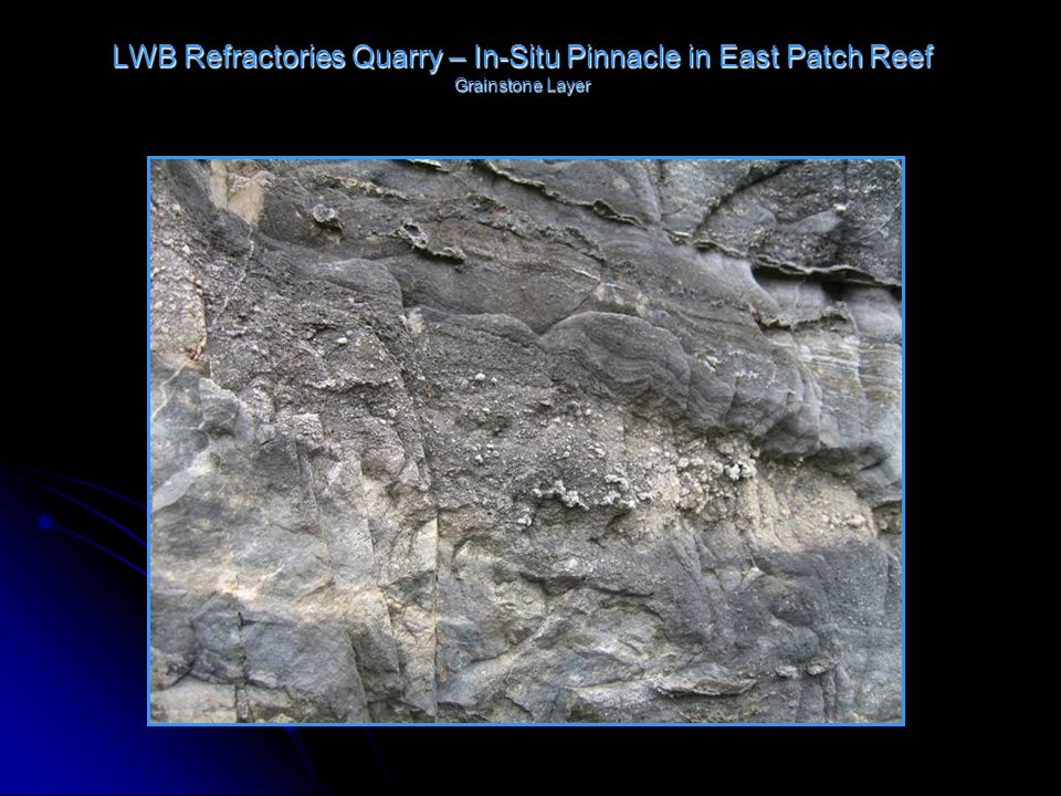 LWB Refractories Quarry – In-Situ Pinnacle in East Patch Reef Grainstone Layer