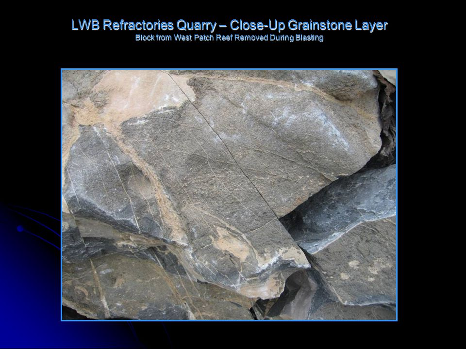 LWB Refractories Quarry – Close-Up Grainstone Layer Block from West Patch Reef Removed During Blasting