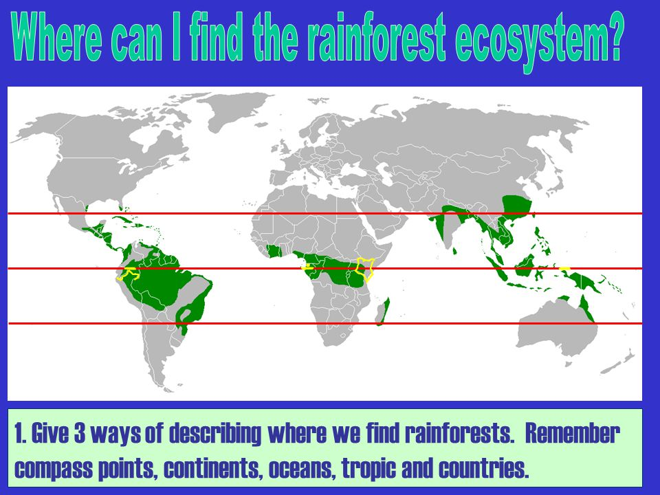 1. Give 3 ways of describing where we find rainforests. Remember compass points, continents, oceans, tropic and countries.