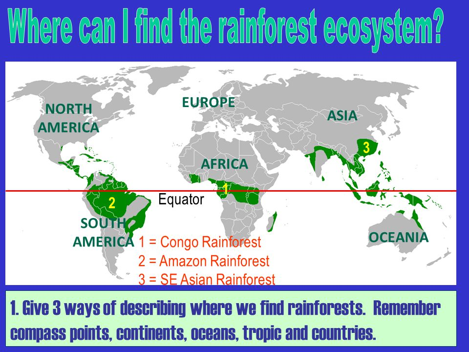 NORTH AMERICA SOUTH AMERICA ASIA EUROPE OCEANIA AFRICA Equator 1 = Congo Rainforest 2 = Amazon Rainforest 3 = SE Asian Rainforest 2 3 1