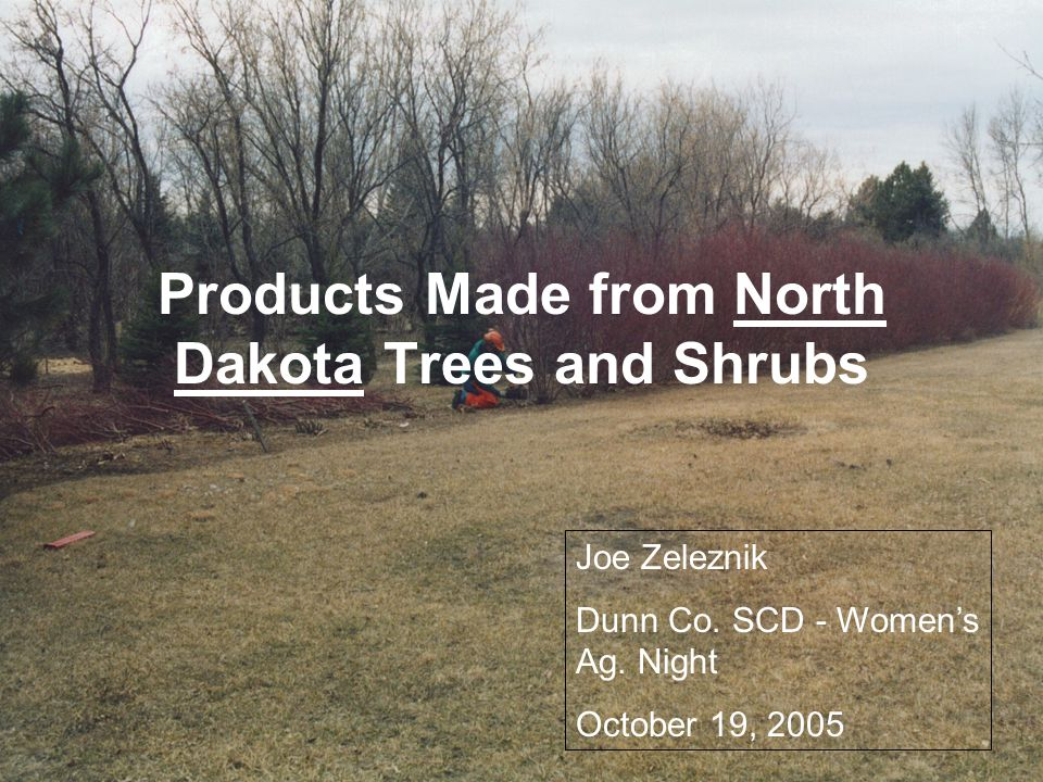 Products Made from North Dakota Trees and Shrubs Joe Zeleznik Dunn Co. SCD - Women's Ag. Night October 19, 2005