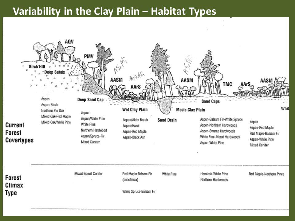 Variability in the Clay Plain – Habitat Types