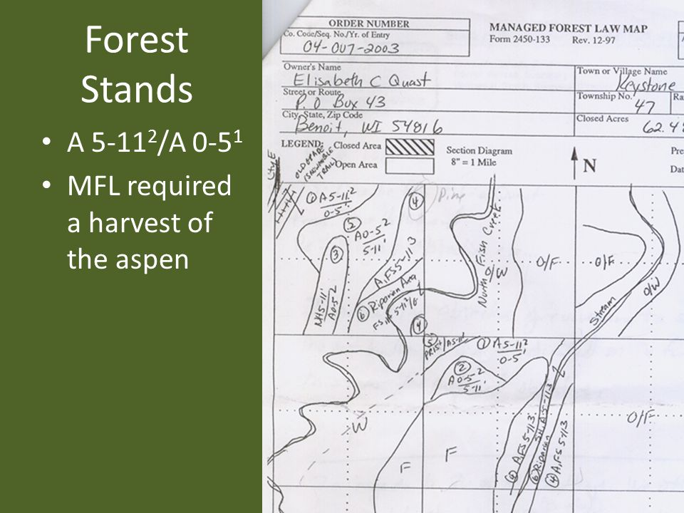 Forest Stands A 5-11 2 /A 0-5 1 MFL required a harvest of the aspen