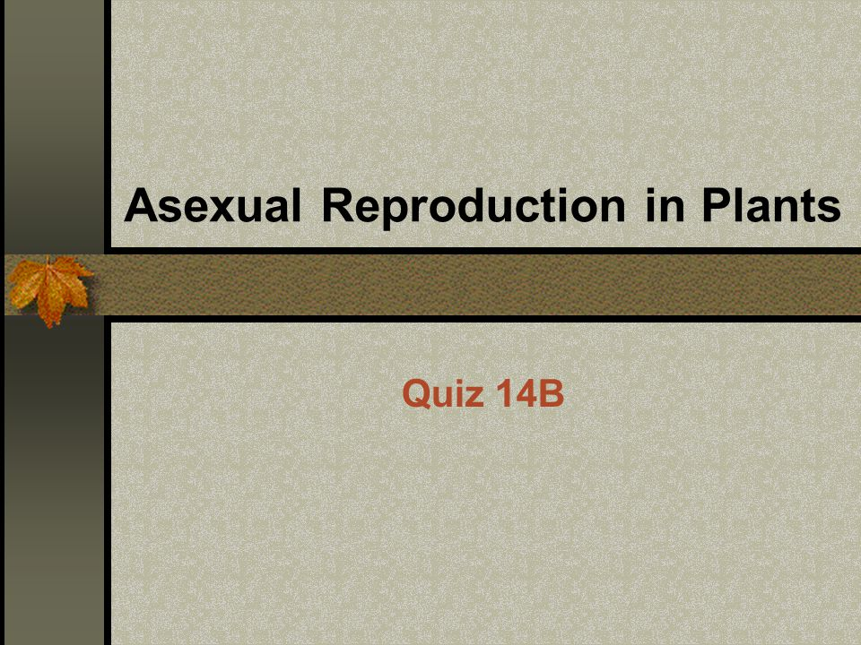 Asexual Reproduction in Plants Quiz 14B