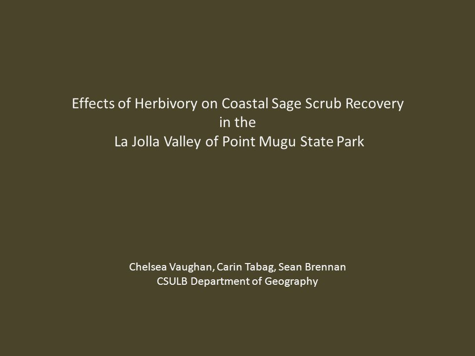 Effects of Herbivory on Coastal Sage Scrub Recovery in the La Jolla Valley of Point Mugu State Park Chelsea Vaughan, Carin Tabag, Sean Brennan CSULB Department of Geography