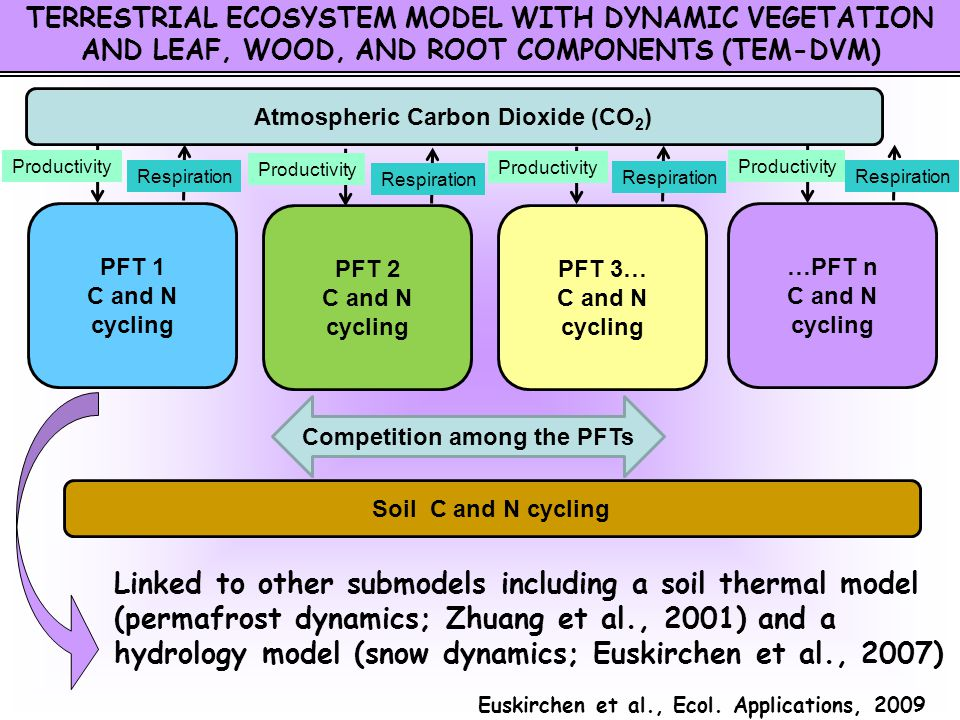 TERRESTRIAL ECOSYSTEM MODEL WITH DYNAMIC VEGETATION AND LEAF, WOOD, AND ROOT COMPONENTS (TEM-DVM) Linked to other submodels including a soil thermal m