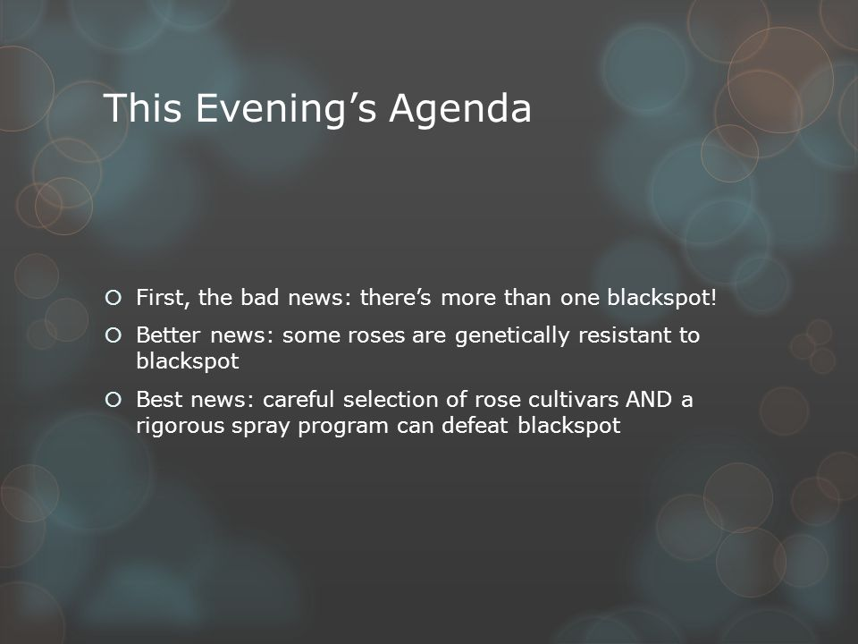 This Evening's Agenda  First, the bad news: there's more than one blackspot.