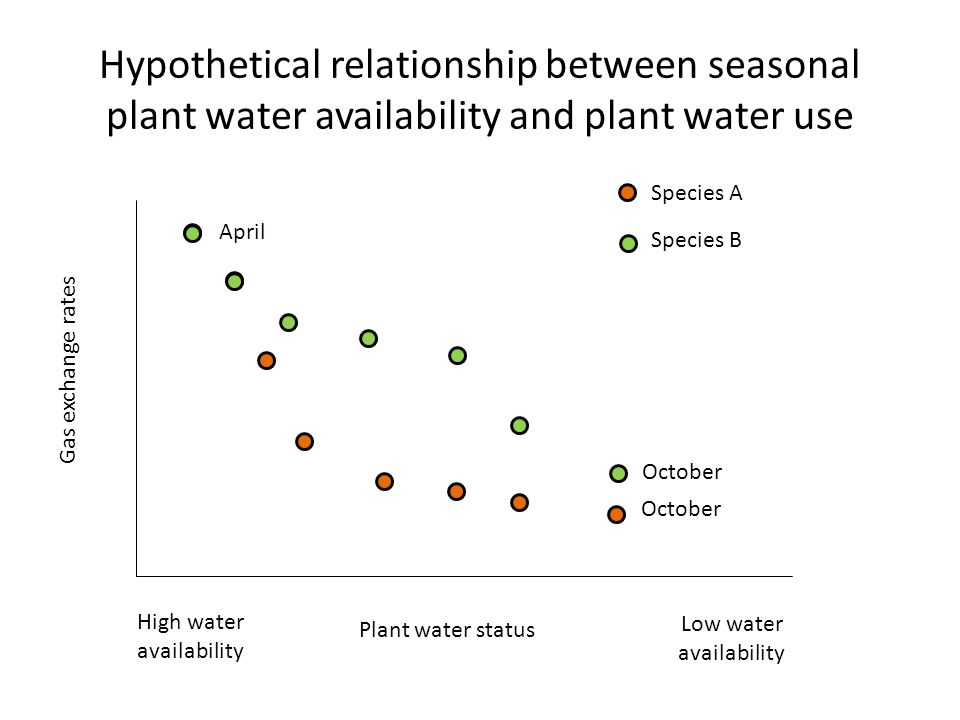 Hypothetical relationship between seasonal plant water availability and plant water use Gas exchange rates Plant water status High water availability Low water availability April October Species A Species B