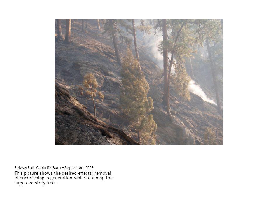 Selway Falls Cabin RX Burn – September 2009.
