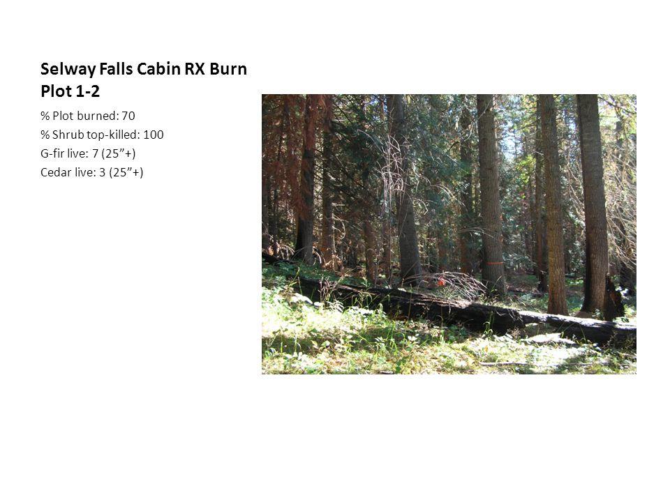 Selway Falls Cabin RX Burn Plot 1-2 % Plot burned: 70 % Shrub top-killed: 100 G-fir live: 7 (25 +) Cedar live: 3 (25 +)