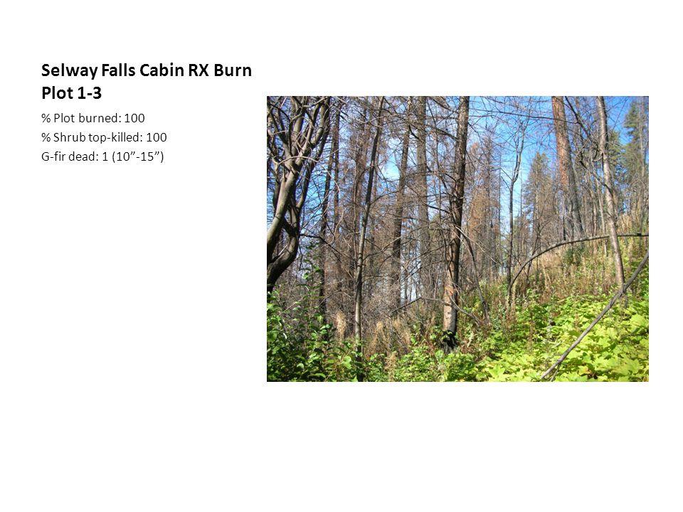 Selway Falls Cabin RX Burn Plot 1-3 % Plot burned: 100 % Shrub top-killed: 100 G-fir dead: 1 (10 -15 )