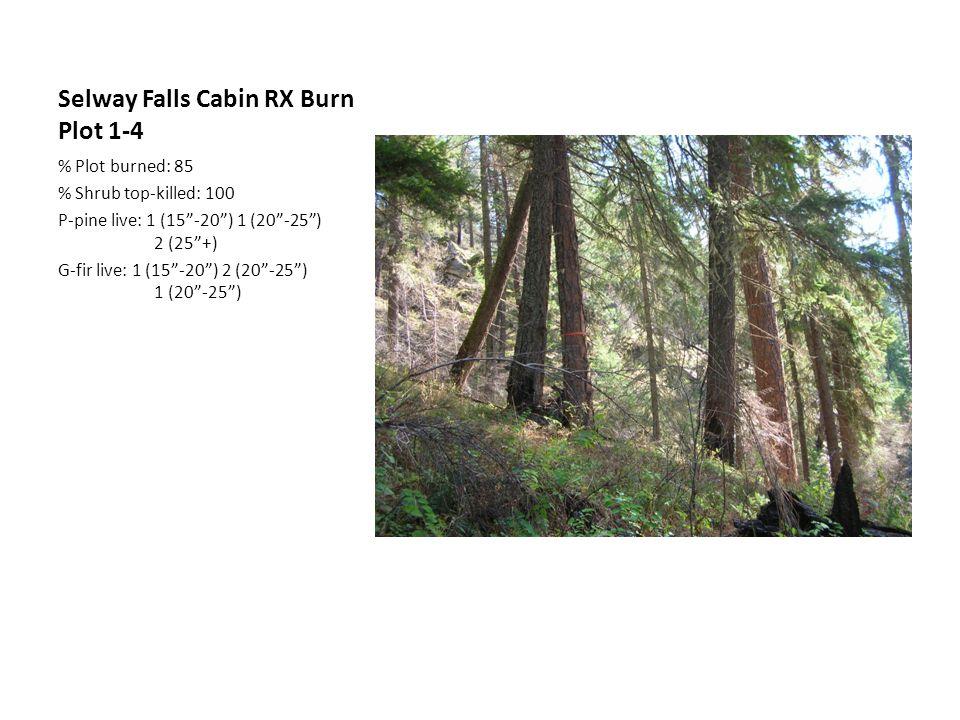 Selway Falls Cabin RX Burn Plot 1-4 % Plot burned: 85 % Shrub top-killed: 100 P-pine live: 1 (15 -20 ) 1 (20 -25 ) 2 (25 +) G-fir live: 1 (15 -20 ) 2 (20 -25 ) 1 (20 -25 )