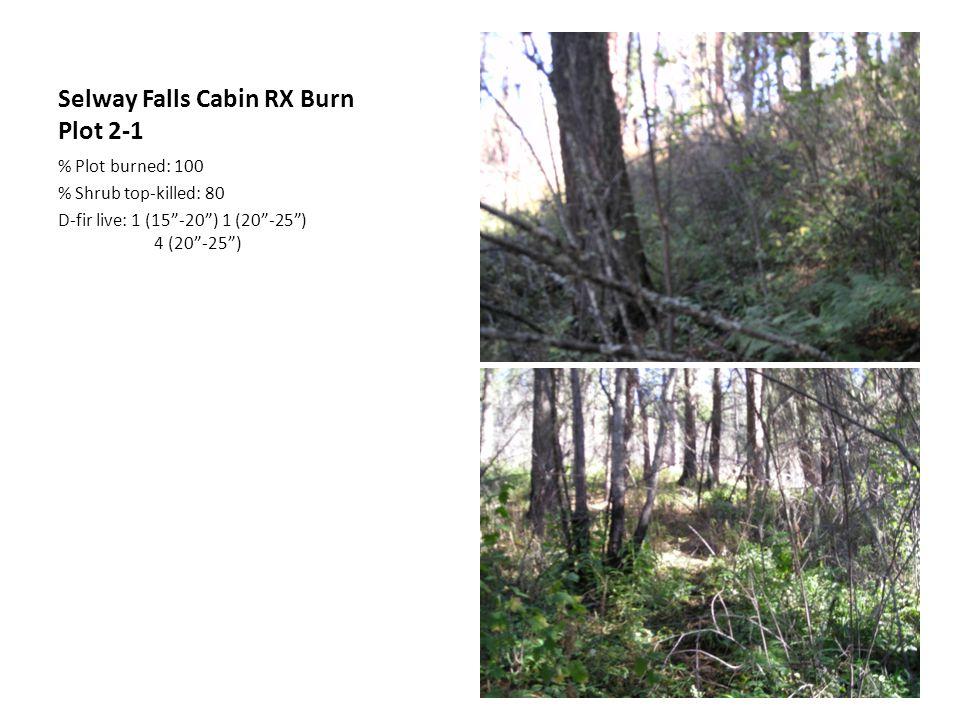 Selway Falls Cabin RX Burn Plot 2-1 % Plot burned: 100 % Shrub top-killed: 80 D-fir live: 1 (15 -20 ) 1 (20 -25 ) 4 (20 -25 )