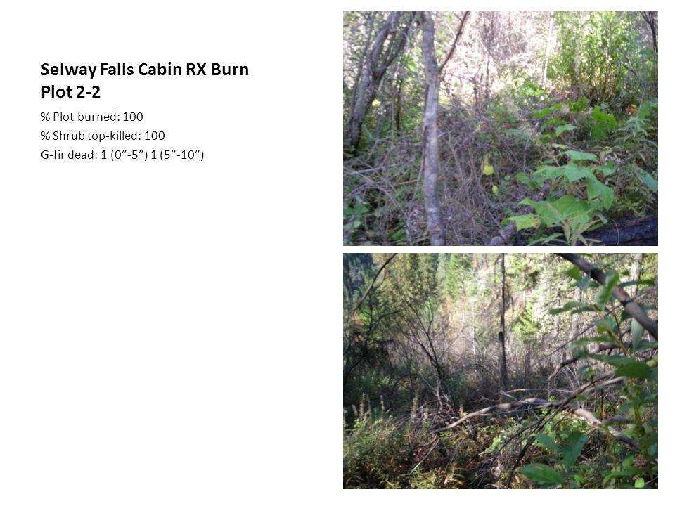 Selway Falls Cabin RX Burn Plot 2-2 % Plot burned: 100 % Shrub top-killed: 100 G-fir dead: 1 (0 -5 ) 1 (5 -10 )
