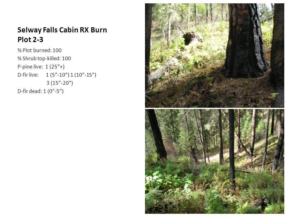 Selway Falls Cabin RX Burn Plot 2-3 % Plot burned: 100 % Shrub top-killed: 100 P-pine live: 1 (25 +) D-fir live: 1 (5 -10 ) 1 (10 -15 ) 3 (15 -20 ) D-fir dead: 1 (0 -5 )