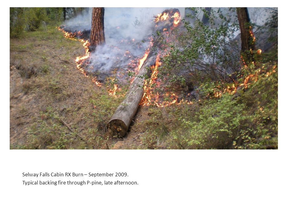 Selway Falls Cabin RX Burn – September 2009. Typical backing fire through P-pine, late afternoon.