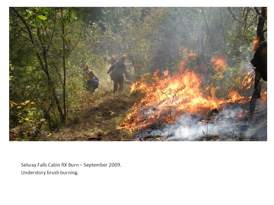 Selway Falls Cabin RX Burn – September 2009. Understory brush burning.