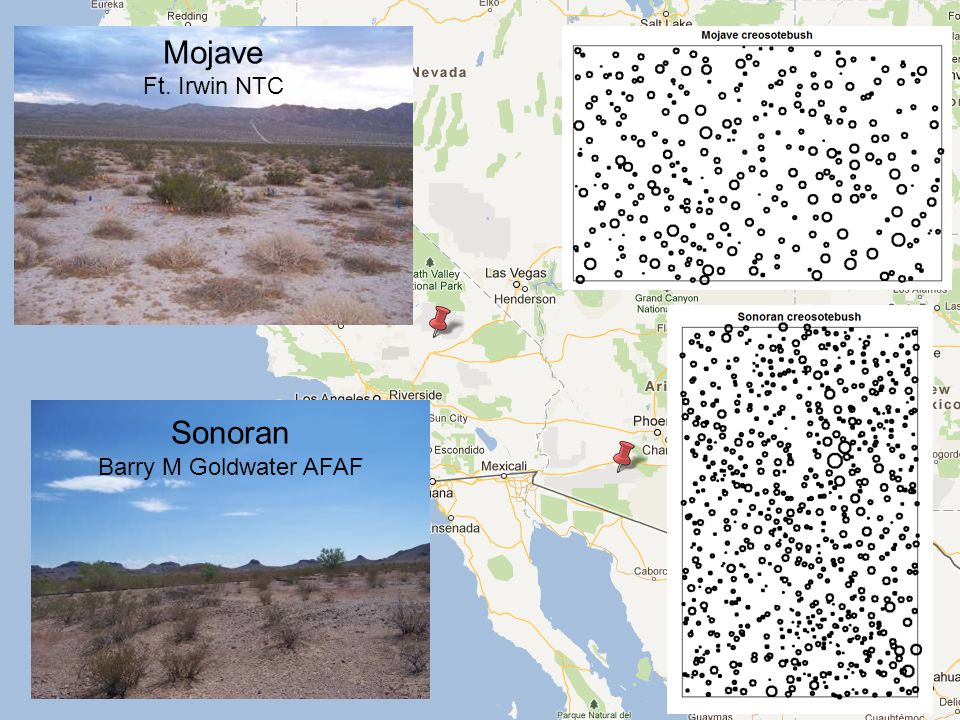 Sonoran Barry M Goldwater AFAF Mojave Ft. Irwin NTC