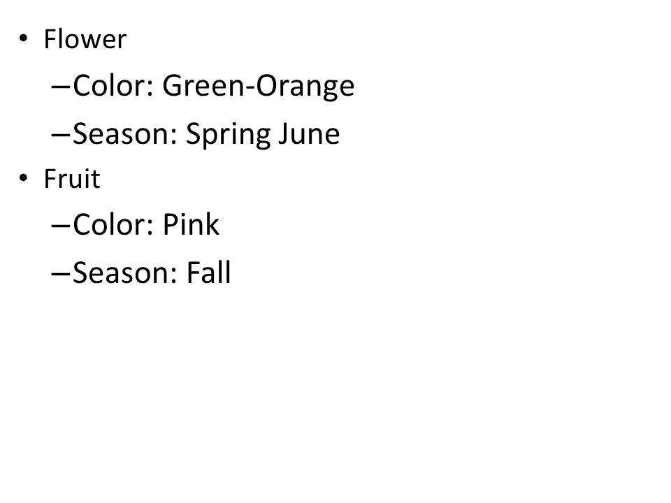 Flower – Color: Green-Orange – Season: Spring June Fruit – Color: Pink – Season: Fall