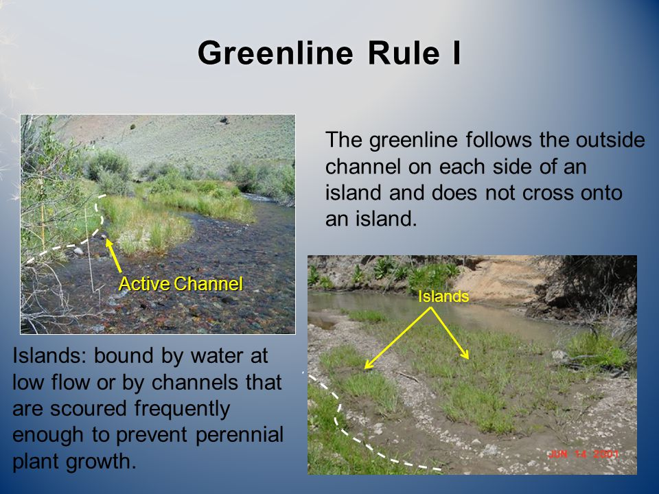 Active Channel Islands Greenline Rule IGreenline Rule I The greenline follows the outside channel on each side of an island and does not cross onto an island.