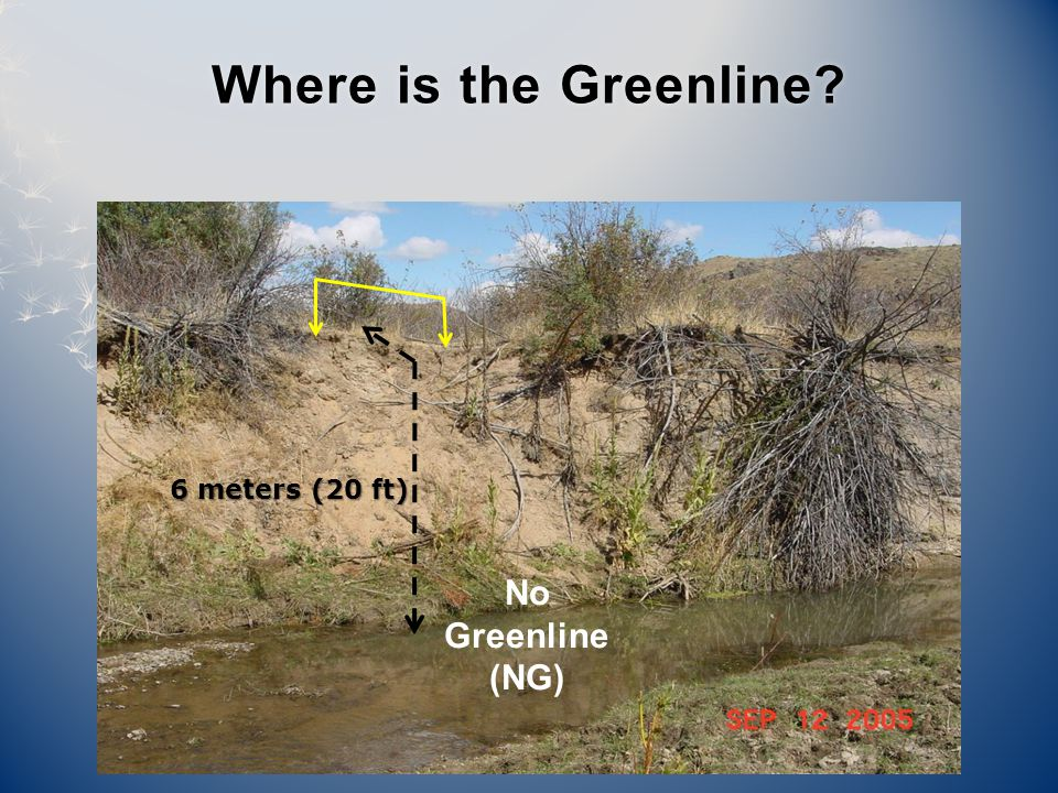 6 meters (20 ft) Where is the Greenline Where is the Greenline No Greenline (NG)