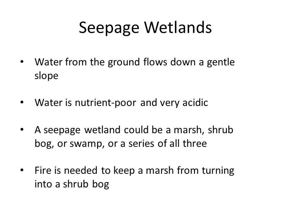 Seepage Wetlands Water from the ground flows down a gentle slope Water is nutrient-poor and very acidic A seepage wetland could be a marsh, shrub bog, or swamp, or a series of all three Fire is needed to keep a marsh from turning into a shrub bog