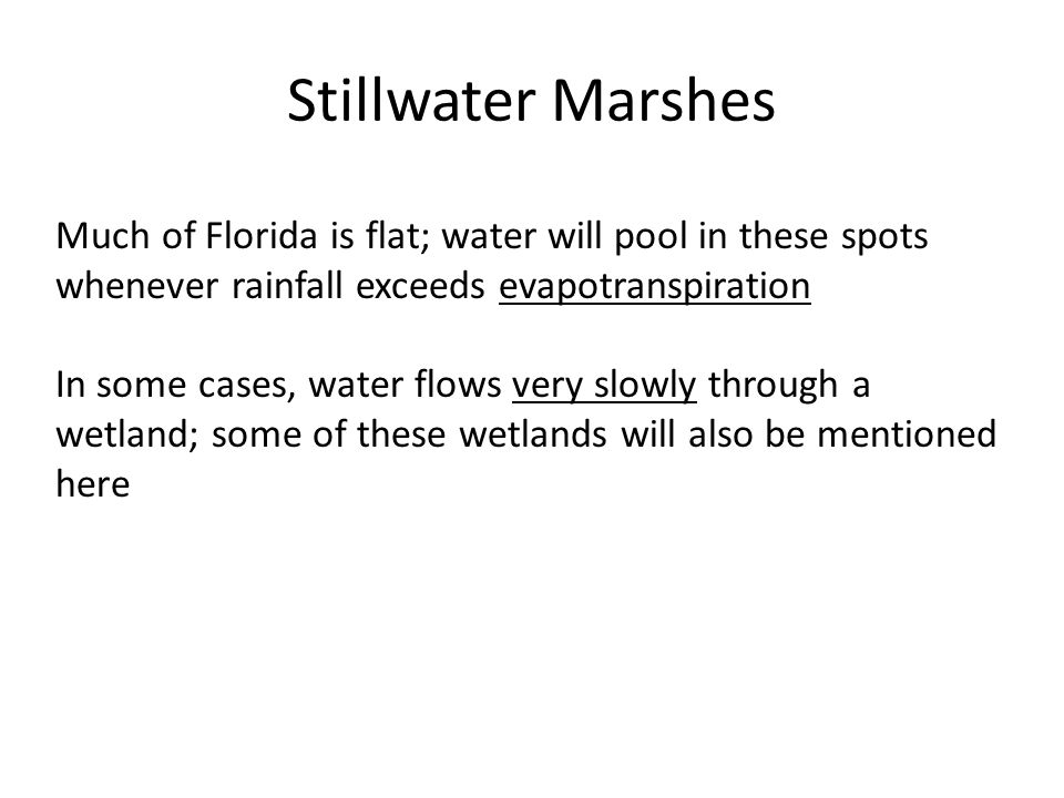 Stillwater Marshes Much of Florida is flat; water will pool in these spots whenever rainfall exceeds evapotranspiration In some cases, water flows very slowly through a wetland; some of these wetlands will also be mentioned here