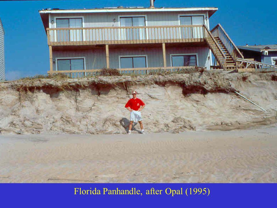 Florida Panhandle, after Opal (1995)