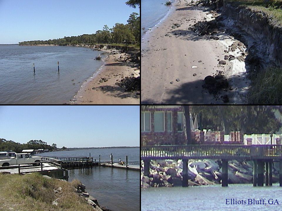 Elliots Bluff, GA