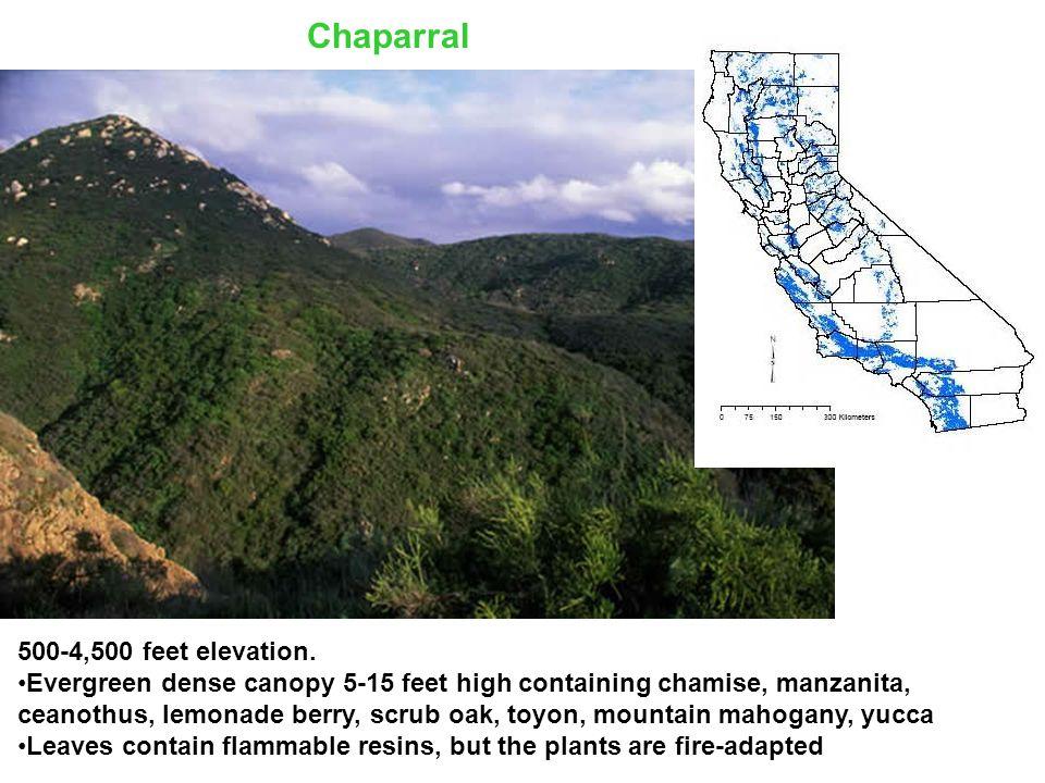 500-4,500 feet elevation.