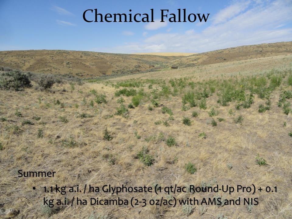 Chemical Fallow Summer 1.1 kg a.i. / ha Glyphosate (1 qt/ac Round-Up Pro) + 0.1 kg a.i. / ha Dicamba (2-3 oz/ac) with AMS and NIS 1.1 kg a.i. / ha Gly