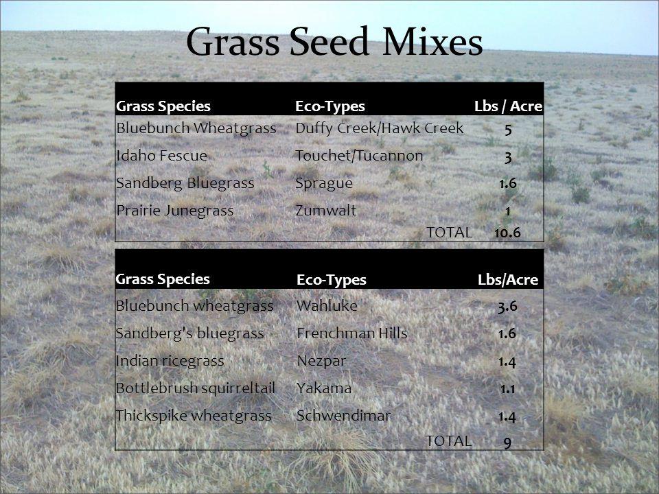 Grass Seed Mixes Grass SpeciesEco-TypesLbs / Acre Bluebunch WheatgrassDuffy Creek/Hawk Creek5 Idaho FescueTouchet/Tucannon3 Sandberg BluegrassSprague1