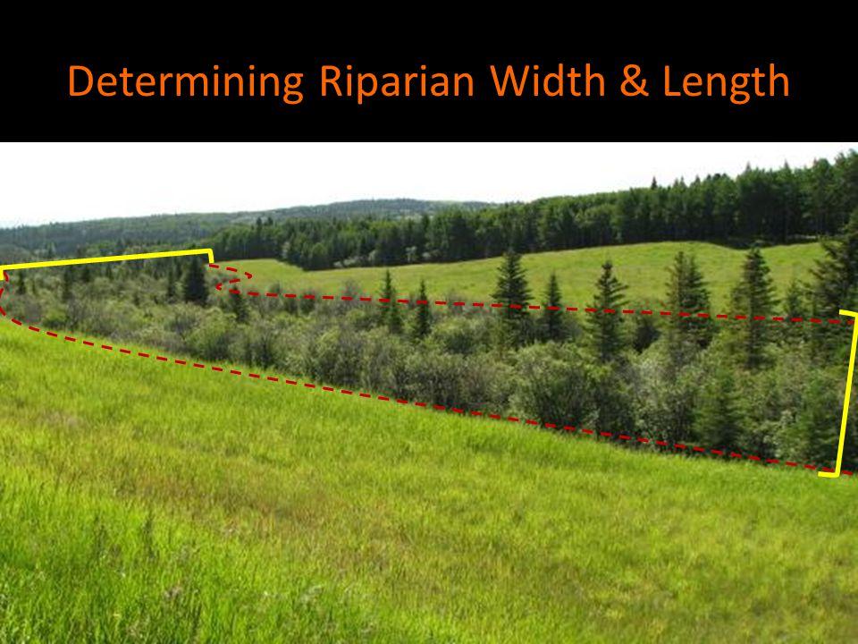 Determining Riparian Width & Length