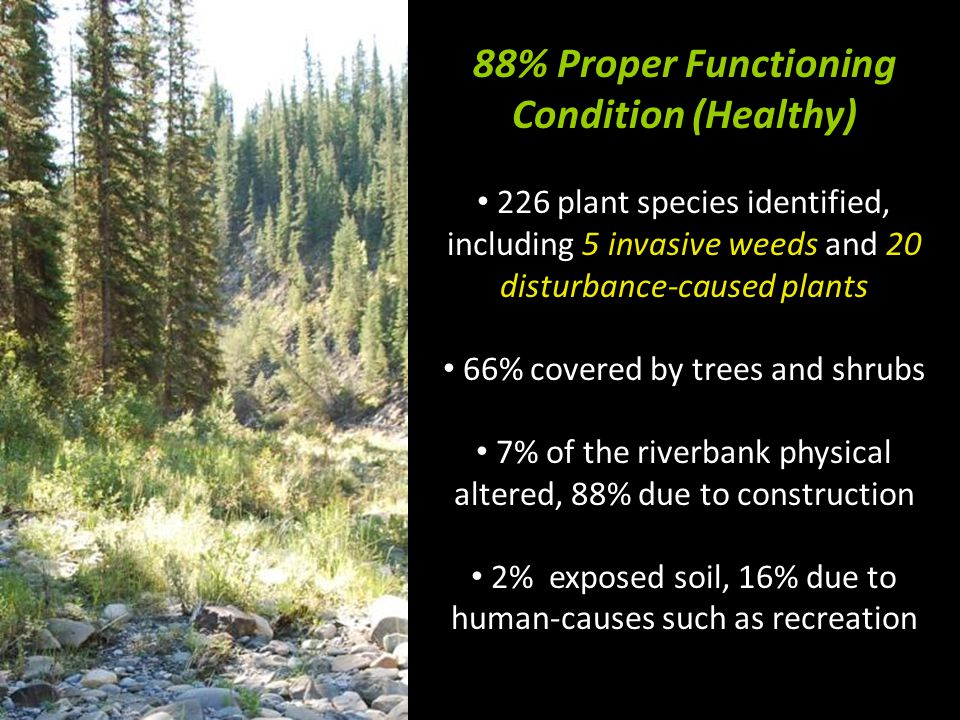 88% Proper Functioning Condition (Healthy) 226 plant species identified, including 5 invasive weeds and 20 disturbance-caused plants 66% covered by trees and shrubs 7% of the riverbank physical altered, 88% due to construction 2% exposed soil, 16% due to human-causes such as recreation