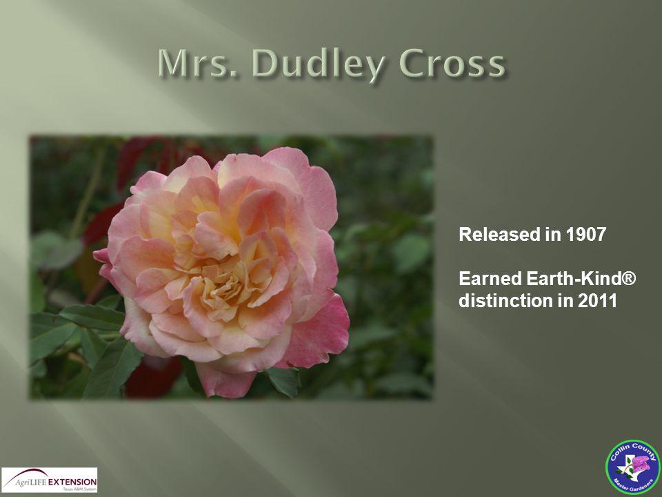 Released in 1907 Earned Earth-Kind® distinction in 2011