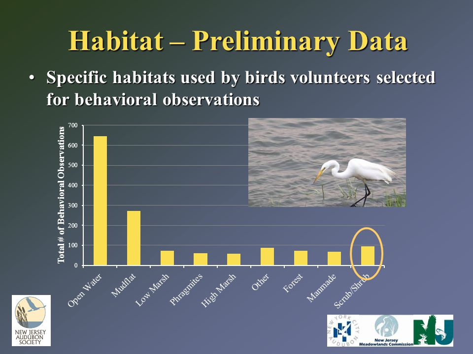 Habitat – Preliminary Data Specific habitats used by birds volunteers selected for behavioral observationsSpecific habitats used by birds volunteers s