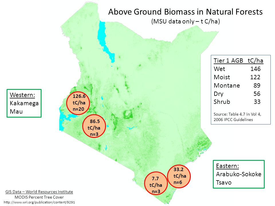 33.2 tC/ha n=6 7.7 tC/ha n=3 126.6 tC/ha n=20 Above Ground Biomass in Natural Forests (MSU data only – t C/ha) Western: Kakamega Mau Eastern: Arabuko-Sokoke Tsavo 86.5 tC/ha n=3 Tier 1 AGB tC/ha Wet 146 Moist 122 Montane 89 Dry 56 Shrub 33 Source: Table 4.7 in Vol 4, 2006 IPCC Guidelines GIS Data – World Resources Institute MODIS Percent Tree Cover http://www.wri.org/publication/content/9291
