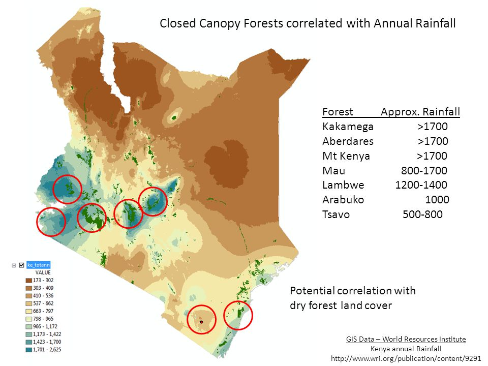Closed Canopy Forests correlated with Annual Rainfall Forest Approx. Rainfall Kakamega >1700 Aberdares >1700 Mt Kenya >1700 Mau 800-1700 Lambwe 1200-1