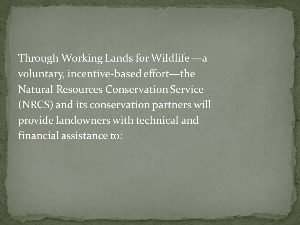 South Carolina Funds received: $175,000 Additional funds requested: $0 Number of applications: 11 Total acres of applications: 950 Total value of applications: $162,000