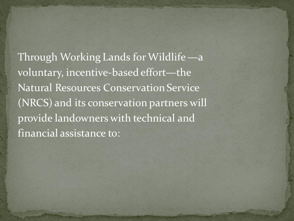 Restore populations of declining wildlife species.