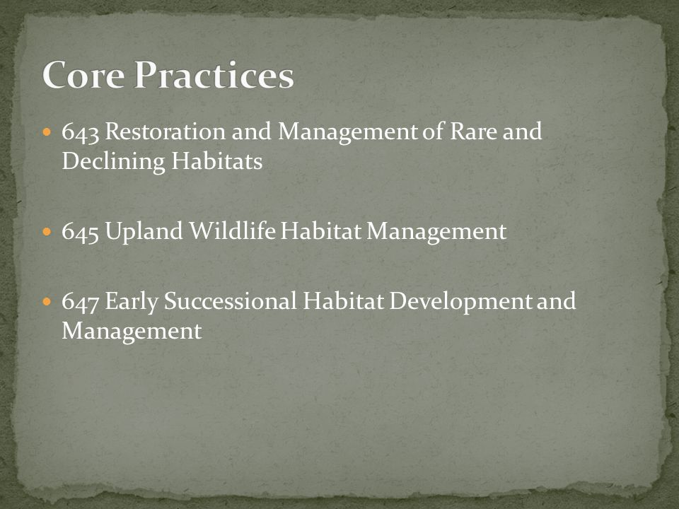 643 Restoration and Management of Rare and Declining Habitats 645 Upland Wildlife Habitat Management 647 Early Successional Habitat Development and Management