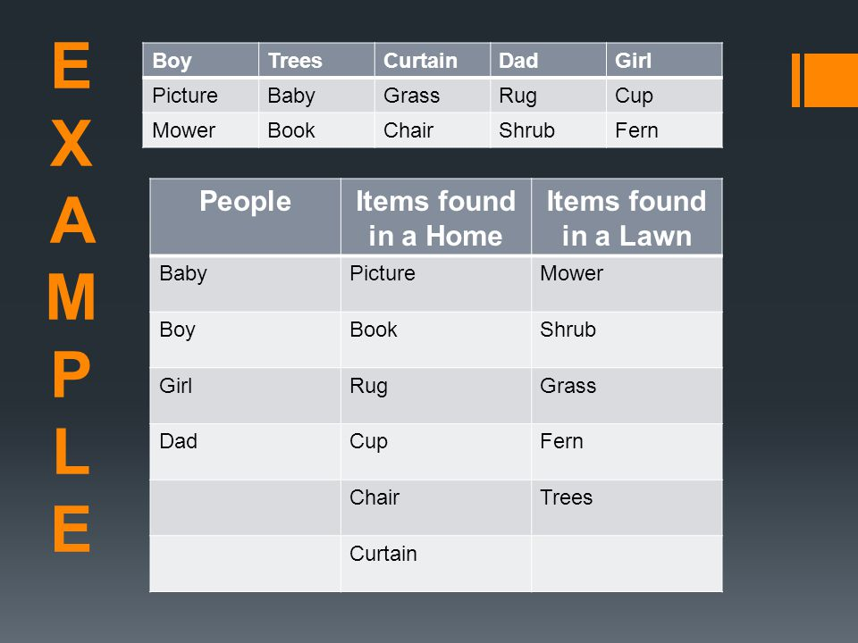 EXAMPLEEXAMPLE BoyTreesCurtainDadGirl PictureBabyGrassRugCup MowerBookChairShrubFern PeopleItems found in a Home Items found in a Lawn BabyPictureMowe