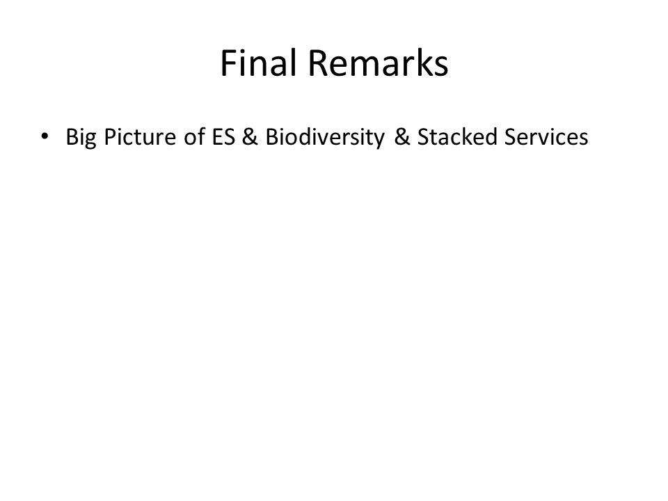 Final Remarks Big Picture of ES & Biodiversity & Stacked Services