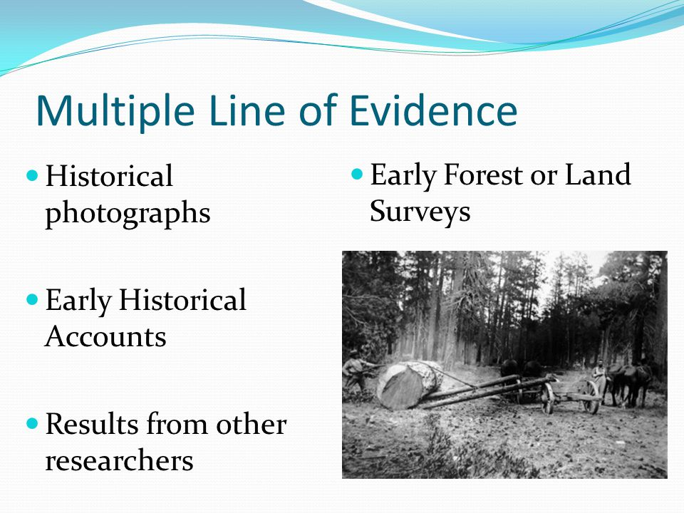 Multiple Line of Evidence Historical photographs Early Historical Accounts Results from other researchers Early Forest or Land Surveys