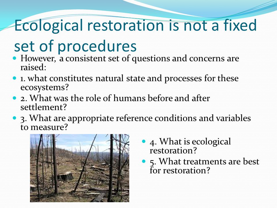 Ecological restoration is not a fixed set of procedures However, a consistent set of questions and concerns are raised: 1.