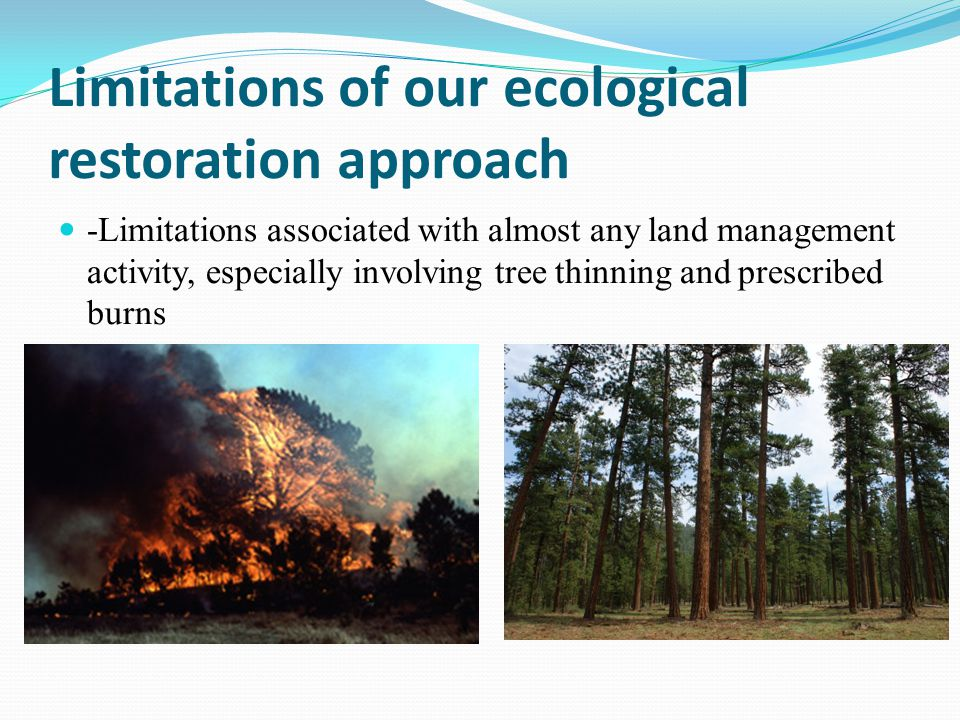 Limitations of our ecological restoration approach -Limitations associated with almost any land management activity, especially involving tree thinning and prescribed burns