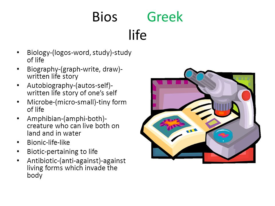 Bios Greek life Biology-(logos-word, study)-study of life Biography-(graph-write, draw)- written life story Autobiography-(autos-self)- written life story of one's self Microbe-(micro-small)-tiny form of life Amphibian-(amphi-both)- creature who can live both on land and in water Bionic-life-like Biotic-pertaining to life Antibiotic-(anti-against)-against living forms which invade the body