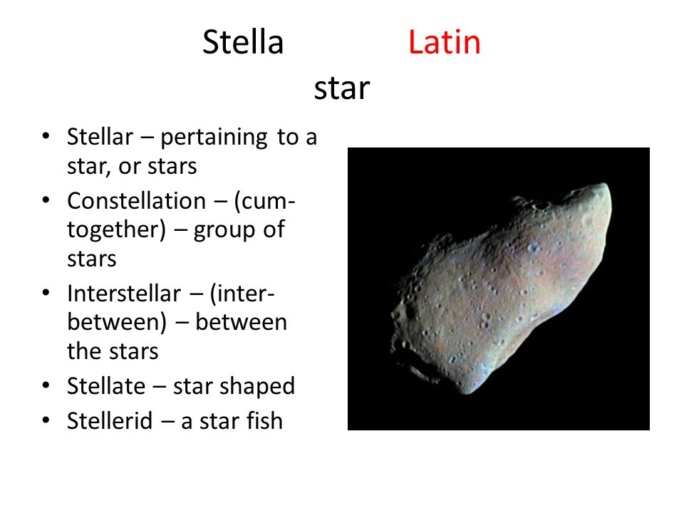 Stella Latin star Stellar – pertaining to a star, or stars Constellation – (cum- together) – group of stars Interstellar – (inter- between) – between the stars Stellate – star shaped Stellerid – a star fish